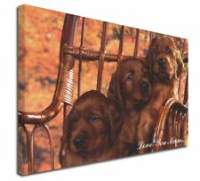 More details for irish red setter puppies 'love you mum' x-large 30