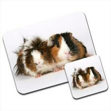 Guinea Pig Mouse Mat / Pad & Coaster