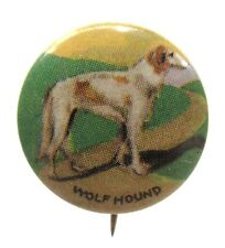 1930's WOLF HOUND WOLFHOUND Dog tin litho pinback button Irish or Russian?