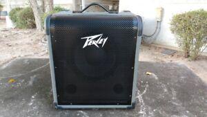 Peavey MAX® 100  Bass Amp Combo (100 watt & built-in chromatic tuner)