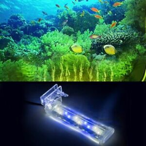 NEW Clip On Clamp Light Lamp LED Blue White For Small Medium Aquarium Fish Tank