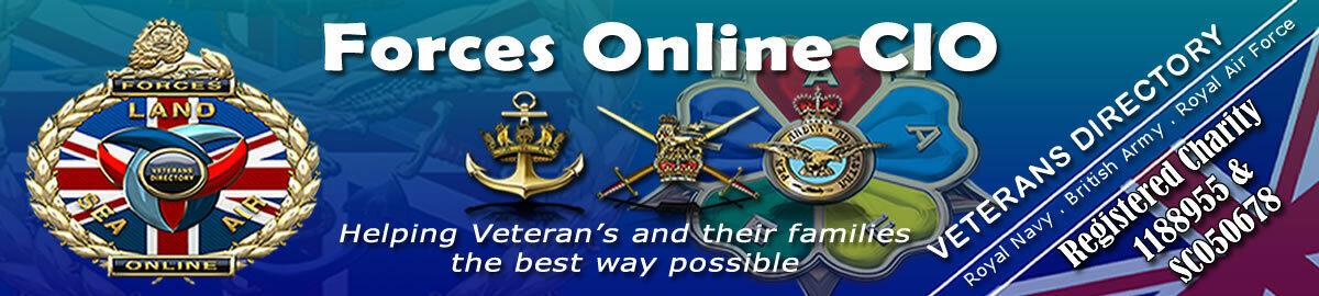 Forces Online CIO Auction Site