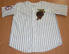 Jim Thome 1993 Indians Game Worn Used TBC Minor League Jersey Charlotte Knights