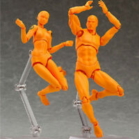 Action Play Movable Figure Male Female Body Model Figma Drawing Anime Hot Sale