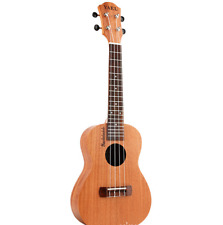 High-end guitar, special guitar for beginners