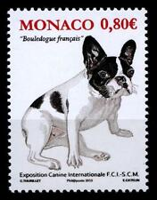 Französische Bulldogge. Hundeausstellung, Monte Carlo. 1W. Monaco 2013