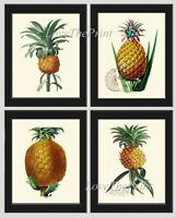 Unframed Pineapple Botanical 4 Prints Antique Tropical Kitchen Decor Wall Art