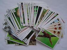 EDEKA unser Wald 10 Sticker zum aussuchen - aus über 370 -