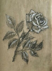 Rose flower. Pencil and white pastel  original drawing A4 format