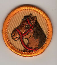 Retired Junior Girl Scouts Horse Horseback Rider Badge with Yellow Border