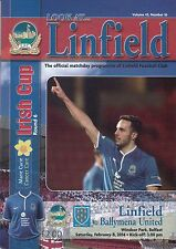 Linfield v Ballymena United 08/02/14