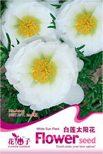 200 Seeds/Pack White Heronsbill Seed Sun Plant Grandiflora Original Package A043