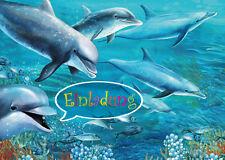 Set di 6 biglietto invito - delfino compleanno bambini o da Visita allo Zoo