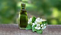 100% Pure & Natural Bhringraj Oil(Eclipta alba) Ayurvedic Oil 100 ML- FREE SHIP