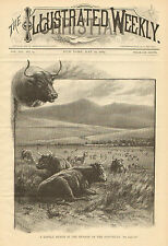 Cattle Ranch, Foot Hills, Western Artist, by W.M. Cary, 1884 Antique Art, Print,