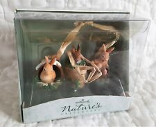 New Hallmark Marjolein Bastin Natures Sketchbook Set of 3 Bunny Rabbit Ornaments