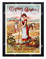 Historic Orchilla Guano AA, crop fertilizer 1880s Advertising Postcard