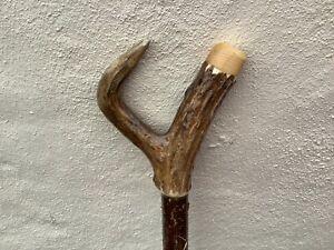 Deer antler walking Thumb Stick.