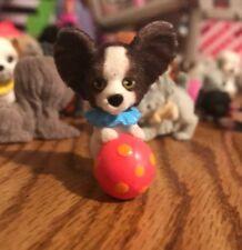 Puppy in My Pocket Series 2 Josie