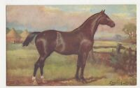 Harry Payne, Horse Studies, English Hunter, Tuck 9138 Postcard, B268