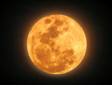 Harvest Moon by Peak® Type Soap/Candle Making Fragrance Oil 1-16 Ounce Free Ship