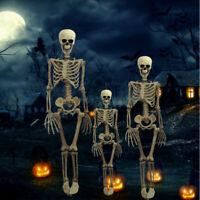2019 Halloween Human Skeleton Poseable Decoration Party Decoration US