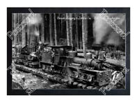 Historic Benson Logging & Lumber Co. - Oak Point, Washington Train Postcard 1