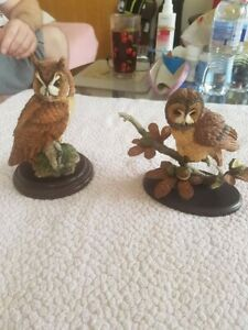 Country artists tawny owls