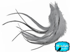 1 Dozen - MEDIUM SOLID GREY Rooster Feathers