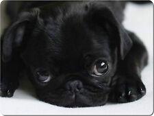 Cute Black Pug Glass Chopping / Cutting Board High Quality Great Birthday Gift