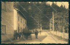 Pistoia Boscolungo Abetone Poste cartolina QQ1393