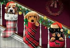 Leanin' Tree Christmas Card -Dogs In Christmas Stockings Theme - ID#574