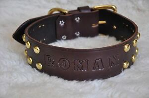 "Wide Leather Large  Dog Custom Collar Personalized 2"" Wide w/ Spots & NAME"