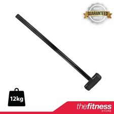 CLEARANCE CoreX Strength Cast Iron Pro Gym Hammer - 12KG FAST FREE DELIVERY