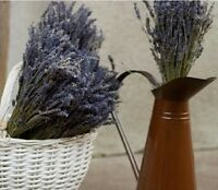 LARGE PROVENCE LAVENDER BUNCH DRIED FLOWER BOUQUET 300 STEMS FRAGRANT WEDDING