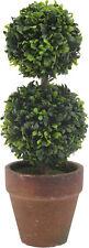Ophelia & Co. Circular Boxwood Topiary in Pot