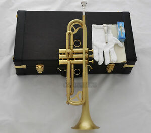 Professional Matt Brass Trumpet B-Flat Horn Monel Valves 2 Mouth Leather Case