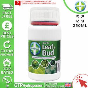 Guard 'n' Aid Healthy Leaf and Bud - 250ml - Plant Strengthener - Foliar Spray
