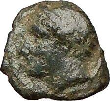 PANORMOS Sicily 336BC Apollo Horse Dolphin Rare  Ancient Greek Coin  i24632