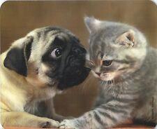 Mauspad Edition Colibri: beste Freunde - Mops und Kätzchen - true friends