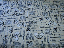 1 Yard Quilt Cotton Fabric - Timeless Treasures Skeletons Anatomy Cream