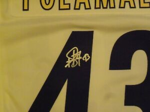 Troy Polamalu, Pgh Steelers, Signed Nike, White, Steelers Jersey, Clean