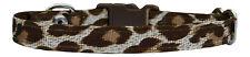 """Brown & Cream Leopardato chihuahua cane cucciolo collare 7 """" -10"""""""