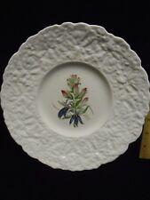 Royal Cauldon Bristol Ironstone WOODSTOCK CARDINAL FLOWER Botanical Lunch Plate