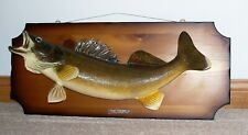 """26"""" Mounted Walleye On Finished Wood Real Skin Taxidermy 9-10 lb Canadian Caught"""
