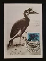 RUANDA MK 1963 VÖGEL VOGEL BIRD BIRDS MAXIMUMKARTE MAXIMUM CARD MC CM c8098