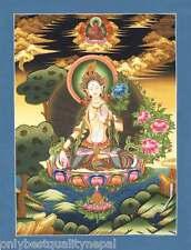 Thangka tara blanche tibétain divinité drölma étoile peintures tibet bouddhisme