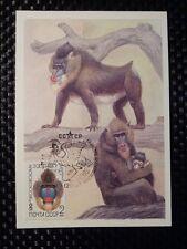 RUSSIA MK 1984 ANIMALS TIERE MANDRILL MAXIMUMKARTE CARTE MAXIMUM CARD MC CM 8376