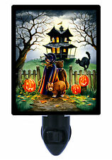 Night Light - Maybe Not - Halloween Trick or Treat - Haunted House - Black Cat