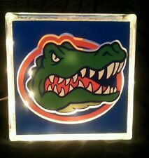 Lighted Florida Gators Glass Block Light~ Home Decor~Gift~Lamp